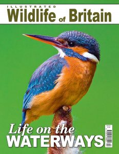 Life on the Waterways Wildlife Of Britain Georgina Probert Writing Writer Journalist Journalism Editing Copy Proofreading Sevenoaks Kent London South East
